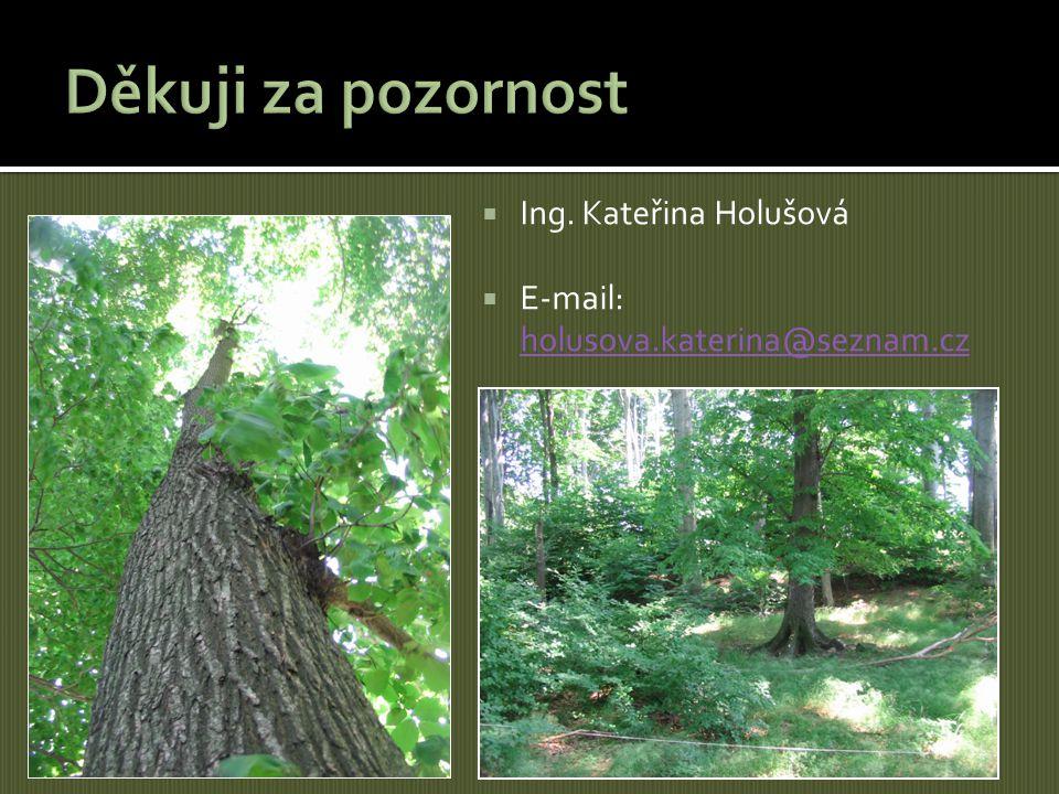  Ing. Kateřina Holušová  E-mail: holusova.katerina@seznam.cz holusova.katerina@seznam.cz