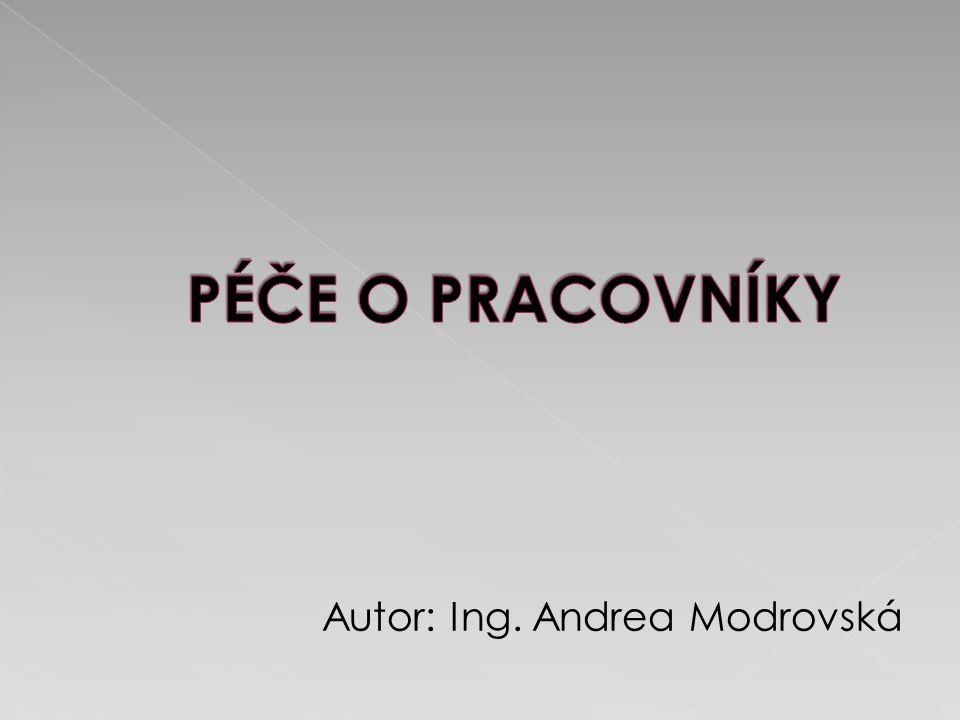 http://www.mpsv.cz/ppropo.php?ID=IPB052 Vlastní tvorba autora