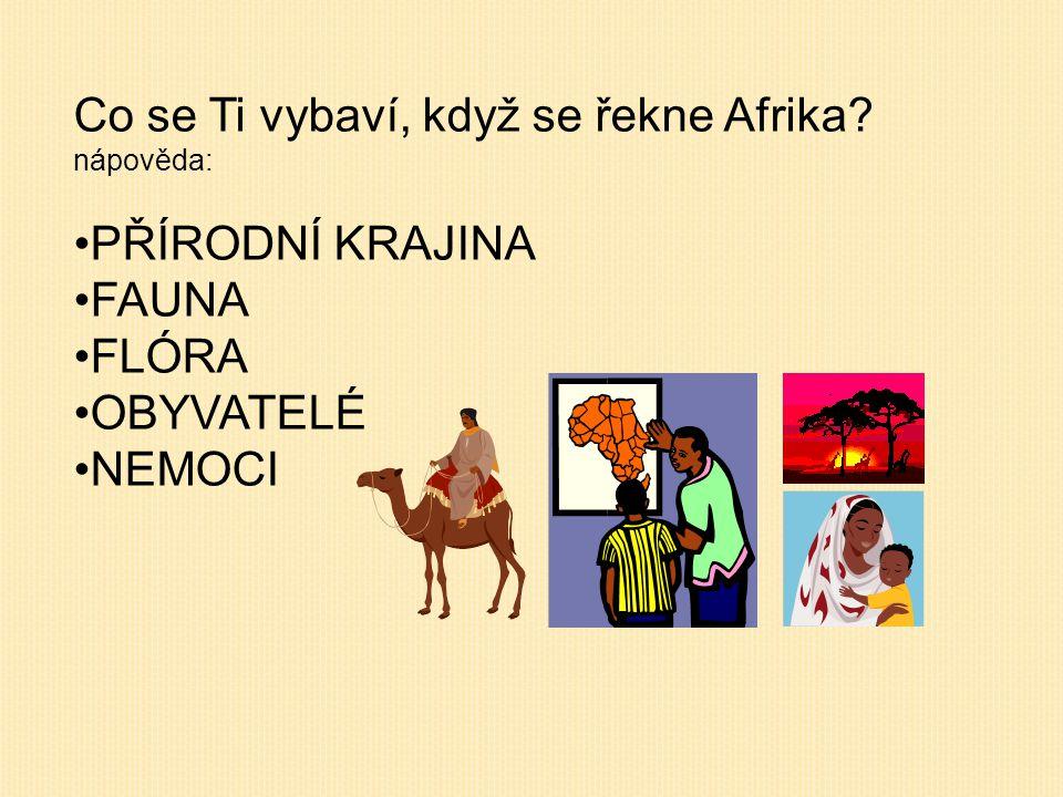 Co se Ti vybaví, když se řekne Afrika? nápověda: PŘÍRODNÍ KRAJINA FAUNA FLÓRA OBYVATELÉ NEMOCI
