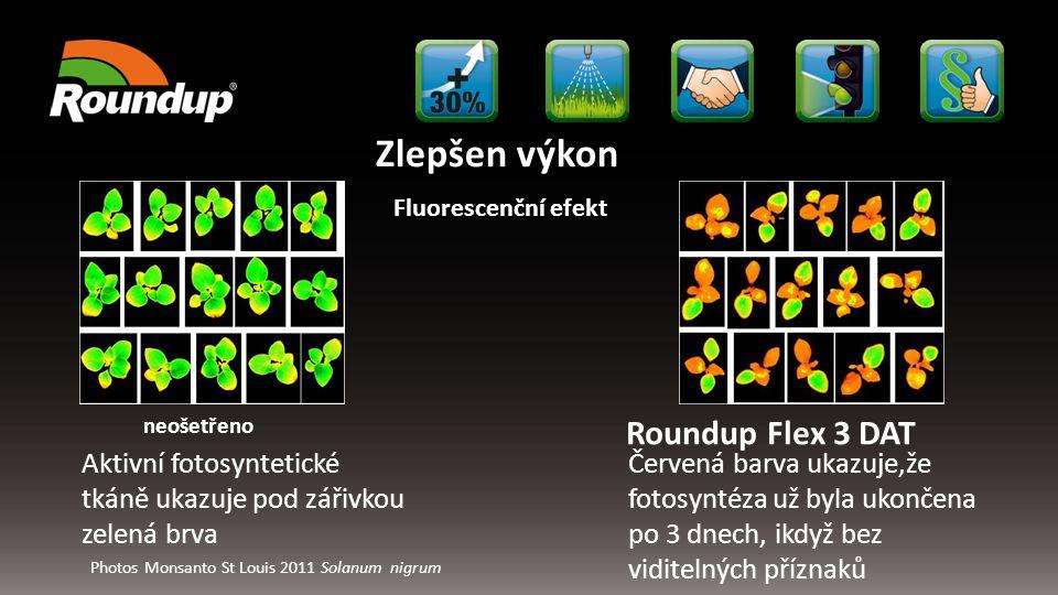 Zlepšen výkon Roundup Flex 3 DAT neošetřeno Fluorescenční efekt Aktivní fotosyntetické tkáně ukazuje pod zářivkou zelená brva Červená barva ukazuje,že