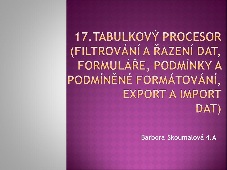Barbora Skoumalová 4.A