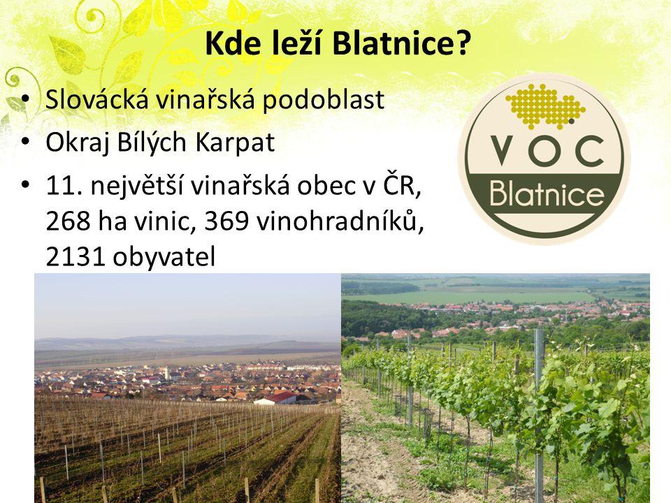 Kde leží Blatnice? Slovácká vinařská podoblast Okraj Bílých Karpat 11. největší vinařská obec v ČR, 268 ha vinic, 369 vinohradníků, 2131 obyvatel