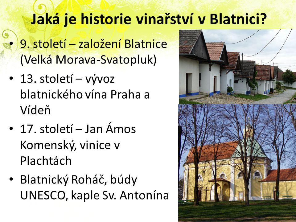 Jaká je historie vinařství v Blatnici.9. století – založení Blatnice (Velká Morava-Svatopluk) 13.