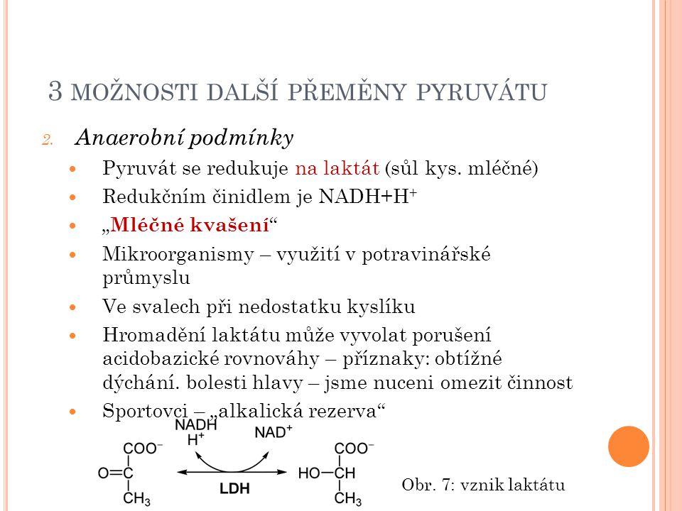 3 MOŽNOSTI DALŠÍ PŘEMĚNY PYRUVÁTU 2. Anaerobní podmínky Pyruvát se redukuje na laktát (sůl kys.