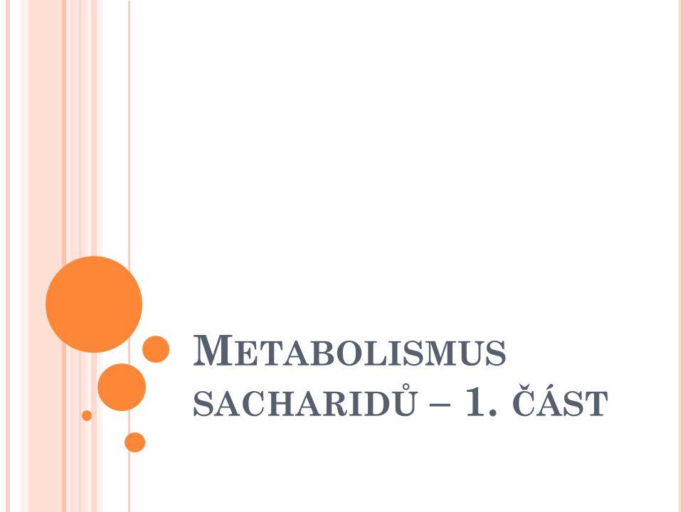 M ETABOLISMUS SACHARIDŮ – 1. ČÁST