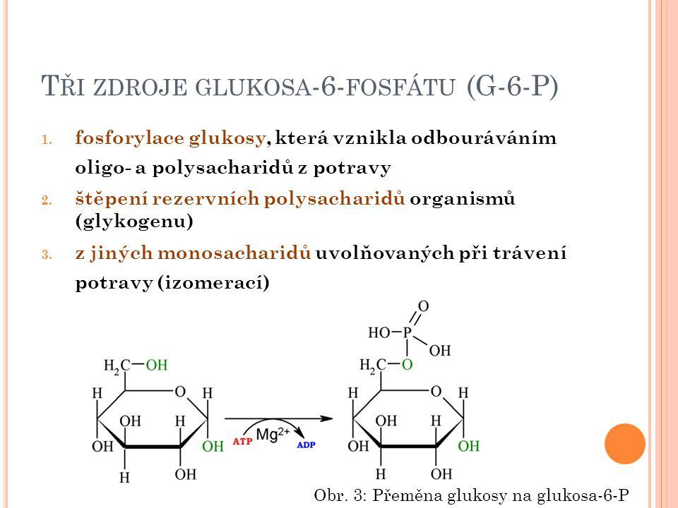 T ŘI ZDROJE GLUKOSA -6- FOSFÁTU (G-6-P) 1.