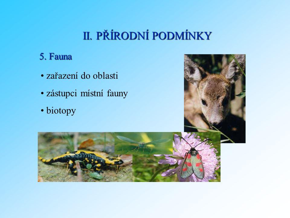 5. Fauna zařazení do oblasti zástupci místní fauny biotopy II. PŘÍRODNÍ PODMÍNKY