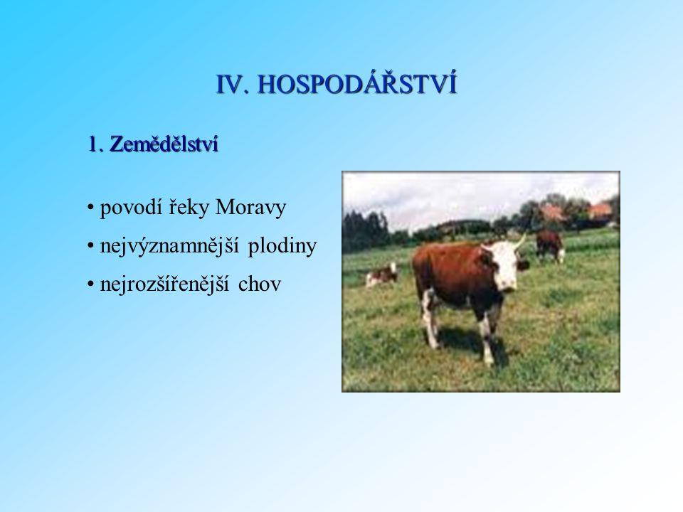 1. Zemědělství povodí řeky Moravy nejvýznamnější plodiny nejrozšířenější chov IV. HOSPODÁŘSTVÍ