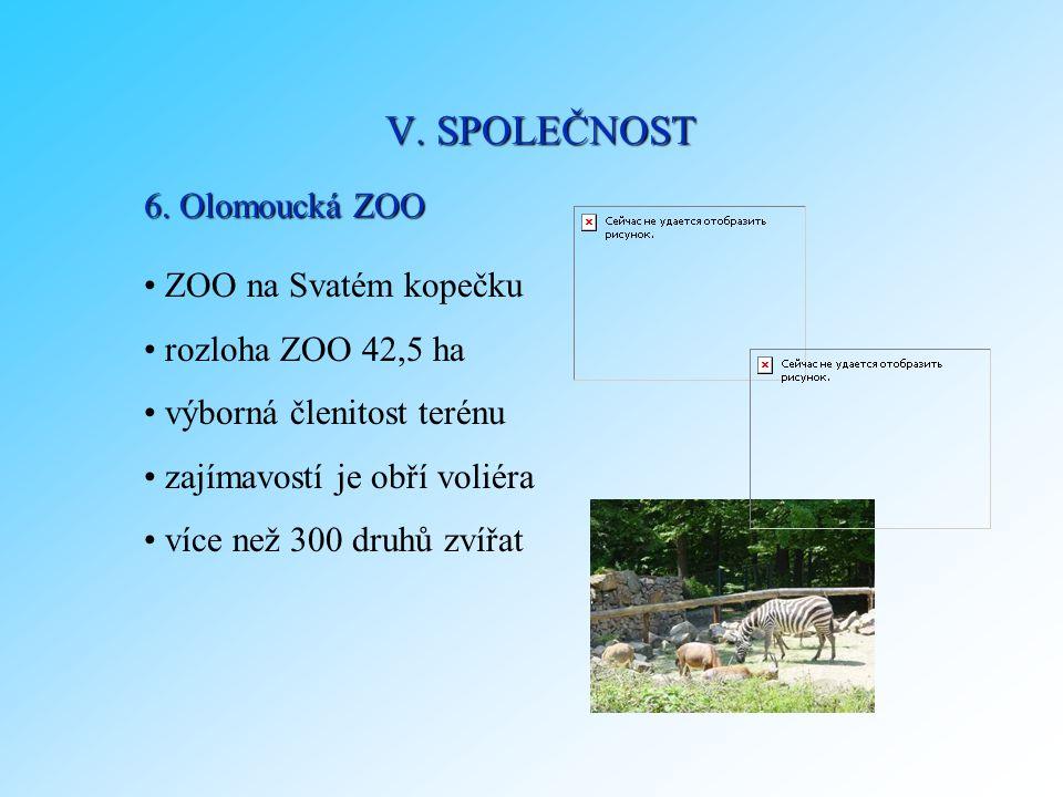 6. Olomoucká ZOO ZOO na Svatém kopečku rozloha ZOO 42,5 ha výborná členitost terénu zajímavostí je obří voliéra více než 300 druhů zvířat V. SPOLEČNOS