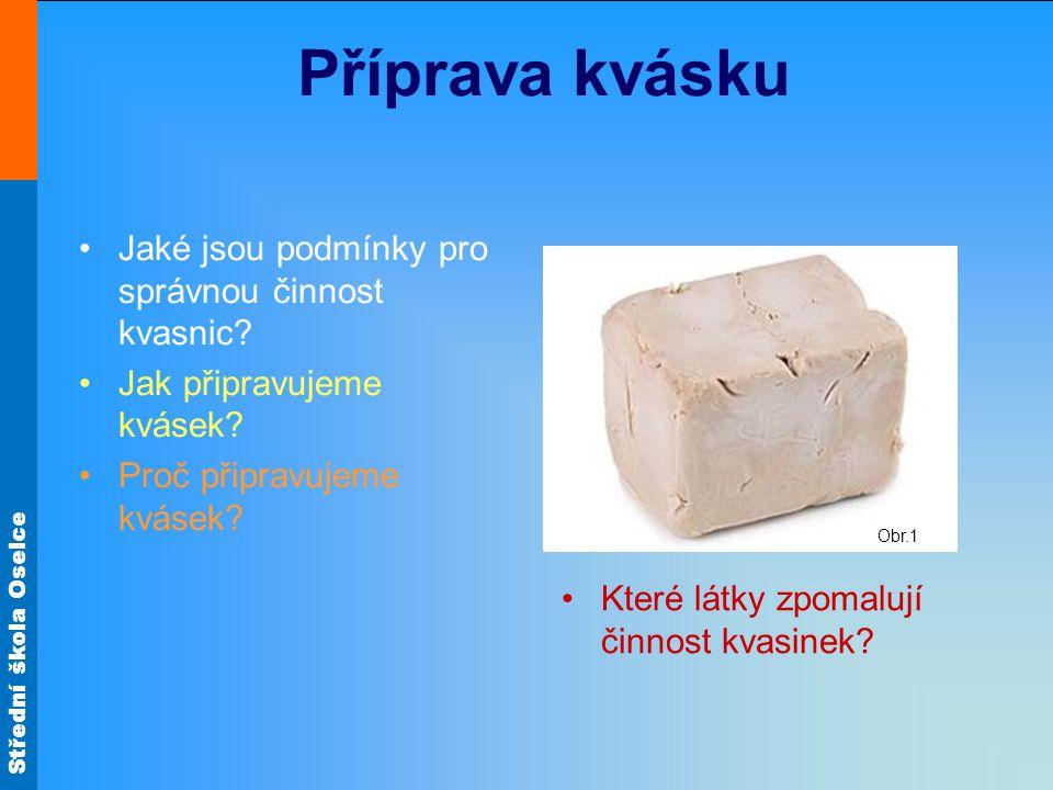 Střední škola Oselce Příprava kvásku Jaké jsou podmínky pro správnou činnost kvasnic.