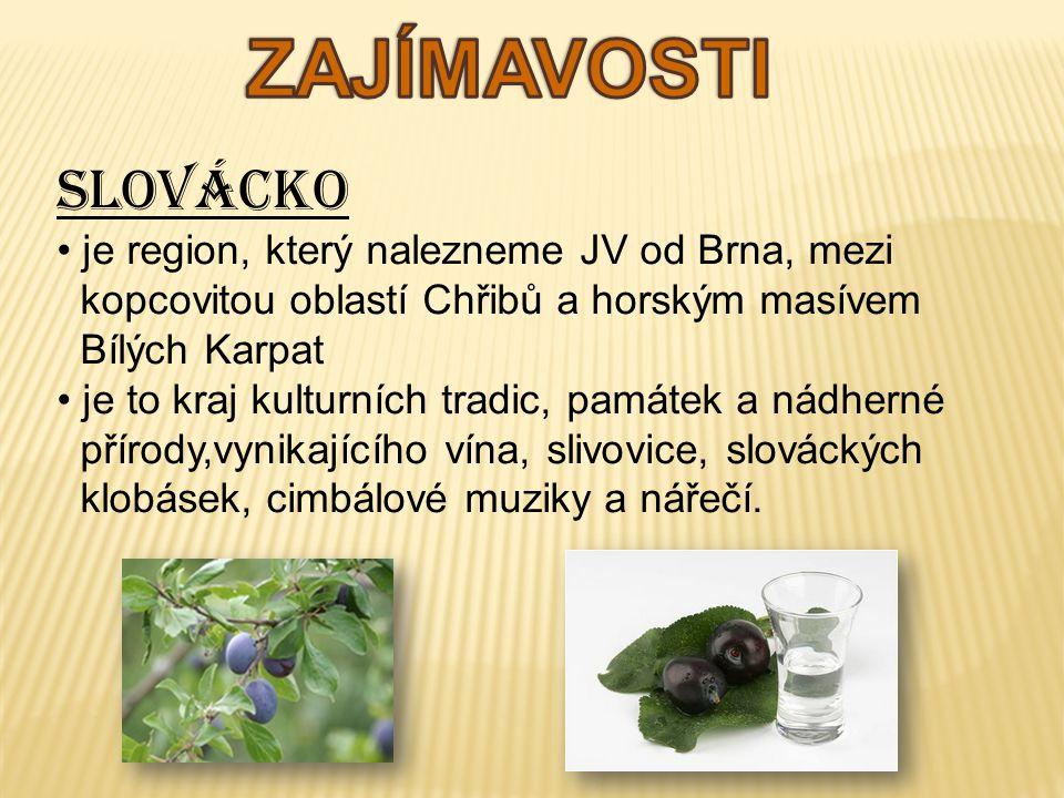 Slovácko je region, který nalezneme JV od Brna, mezi kopcovitou oblastí Chřibů a horským masívem Bílých Karpat je to kraj kulturních tradic, památek a