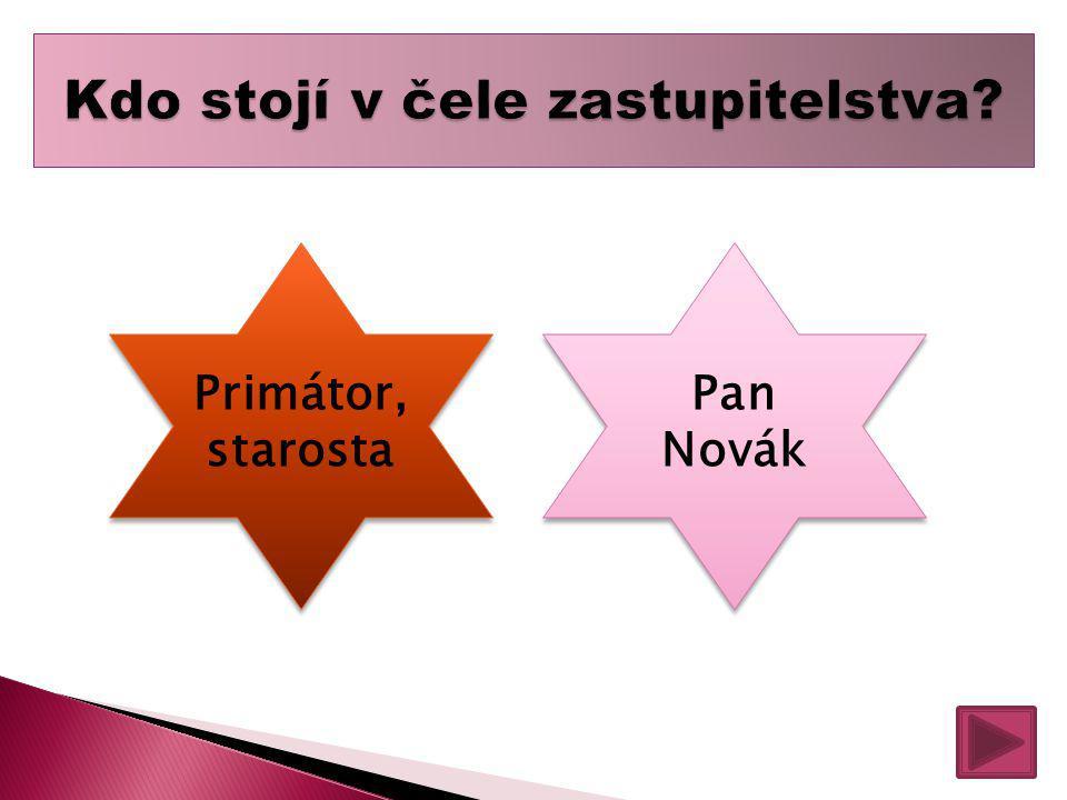 Primátor, starosta Primátor, starosta Pan Novák Pan Novák