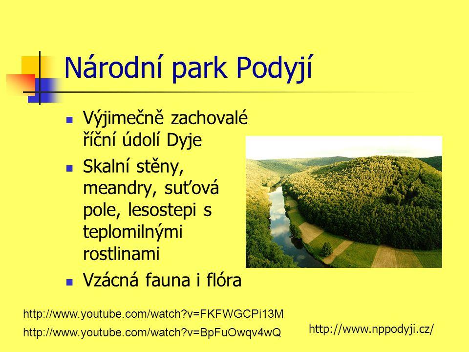 Národní park Podyjí Výjimečně zachovalé říční údolí Dyje Skalní stěny, meandry, suťová pole, lesostepi s teplomilnými rostlinami Vzácná fauna i flóra