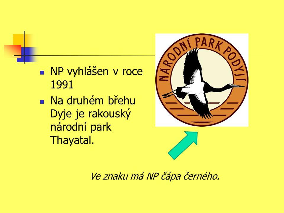 NP vyhlášen v roce 1991 Na druhém břehu Dyje je rakouský národní park Thayatal. Ve znaku má NP čápa černého.