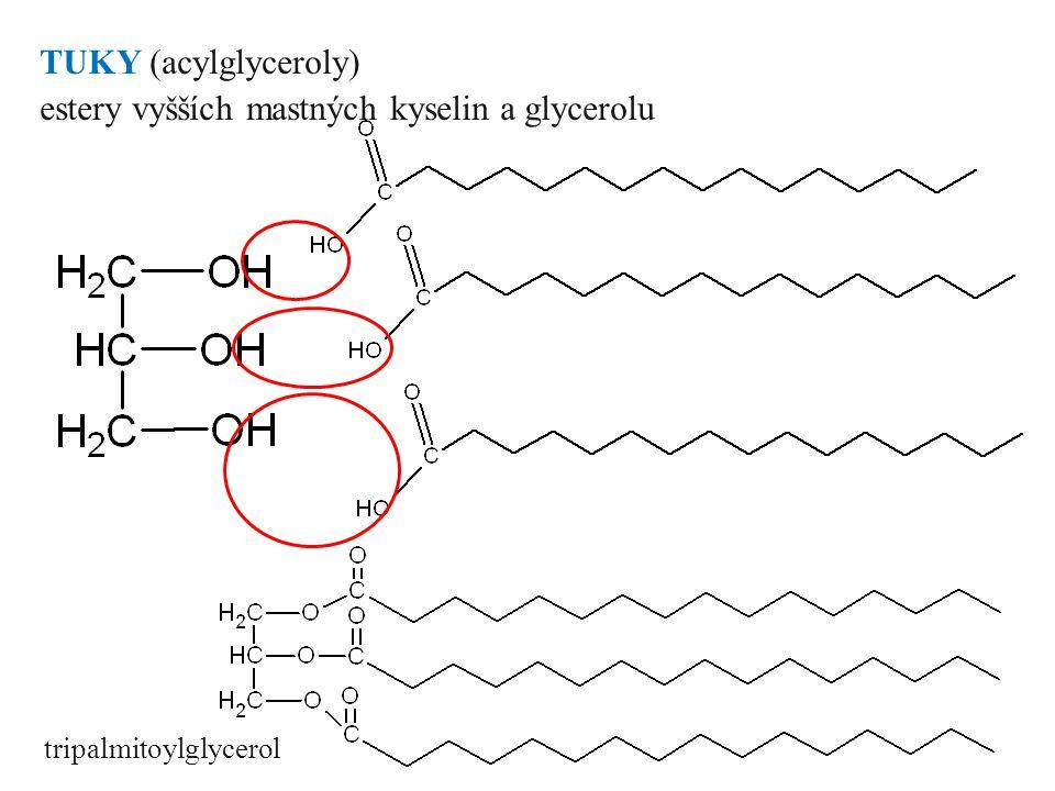 Jednoduché lipidy dle alkoholové složky rozlišujeme: TUKY (acylglyceroly) estery vyšších mastných kyselin a glycerolu VOSKY estery vyšších mastných ky