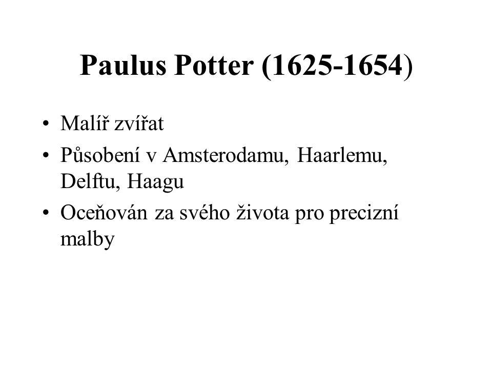 Paulus Potter (1625-1654) Malíř zvířat Působení v Amsterodamu, Haarlemu, Delftu, Haagu Oceňován za svého života pro precizní malby