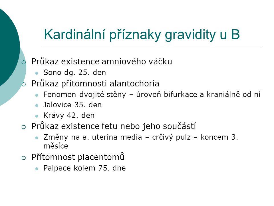 Kardinální příznaky gravidity u B  Průkaz existence amniového váčku Sono dg. 25. den  Průkaz přítomnosti alantochoria Fenomen dvojité stěny – úroveň