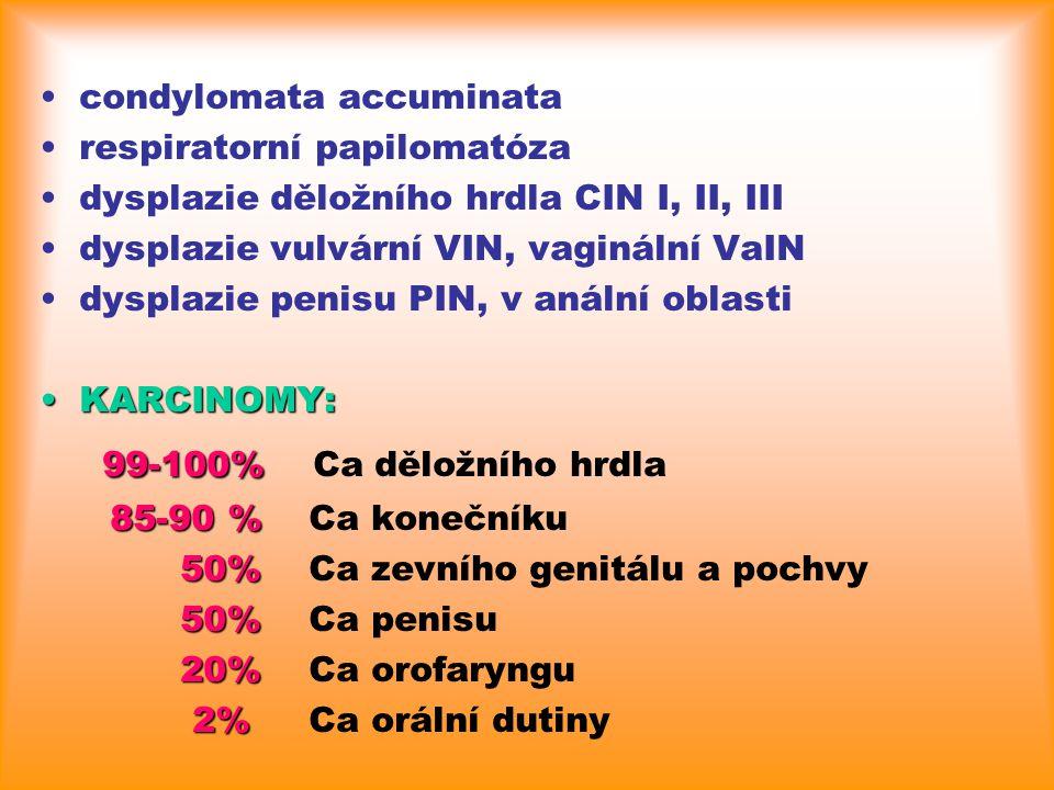 condylomata accuminata respiratorní papilomatóza dysplazie děložního hrdla CIN I, II, III dysplazie vulvární VIN, vaginální VaIN dysplazie penisu PIN,