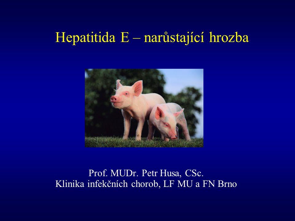 Hepatitida E – narůstající hrozba Prof. MUDr. Petr Husa, CSc. Klinika infekčních chorob, LF MU a FN Brno