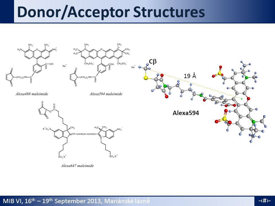 MIB VI, 16 th – 19 th September 2013, Mariánské lázně -15- Donor/Acceptor Structures Alexa594 CC 19 Å