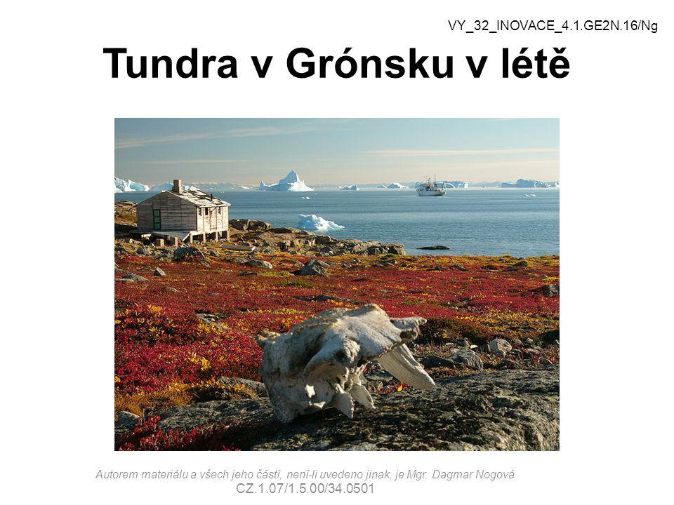 Tundra v Grónsku v létě VY_32_INOVACE_4.1.GE2N.16/Ng Autorem materiálu a všech jeho částí, není-li uvedeno jinak, je Mgr.