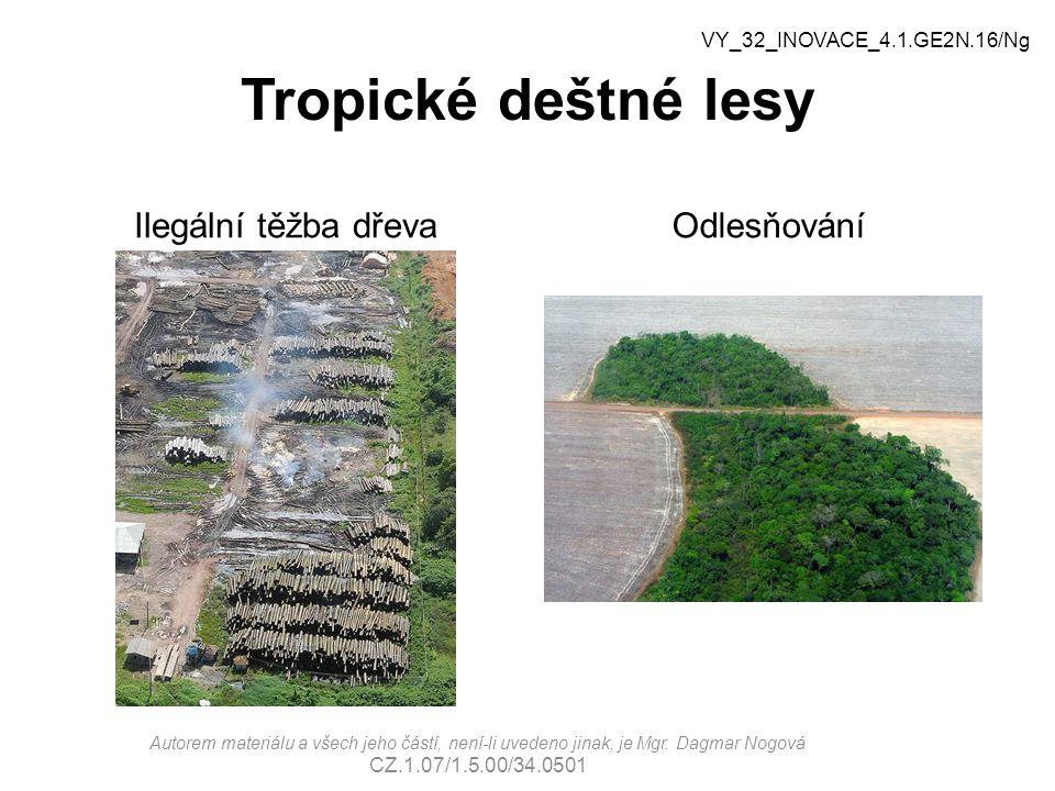 Tropické deštné lesy Ilegální těžba dřevaOdlesňování VY_32_INOVACE_4.1.GE2N.16/Ng Autorem materiálu a všech jeho částí, není-li uvedeno jinak, je Mgr.