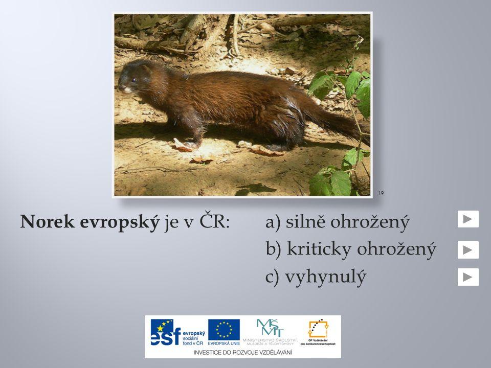 Norek evropský je v ČR:a) silně ohrožený b) kriticky ohrožený c) vyhynulý 19