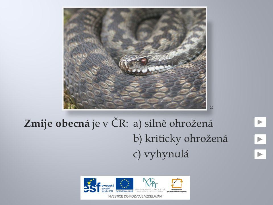 Zmije obecná je v ČR:a) silně ohrožená b) kriticky ohrožená c) vyhynulá 20