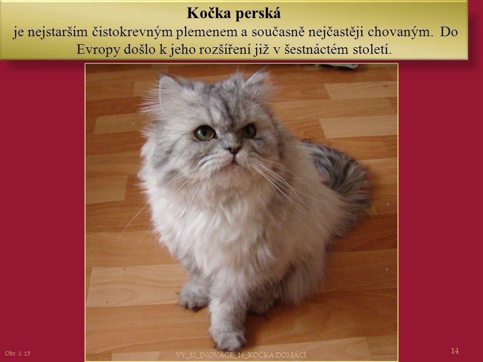 14 Kočka perská je nejstarším čistokrevným plemenem a současně nejčastěji chovaným. Do Evropy došlo k jeho rozšíření již v šestnáctém století. Obr. č.