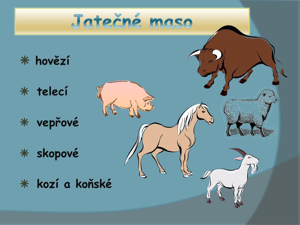  hovězí  telecí  vepřové  skopové  kozí a koňské