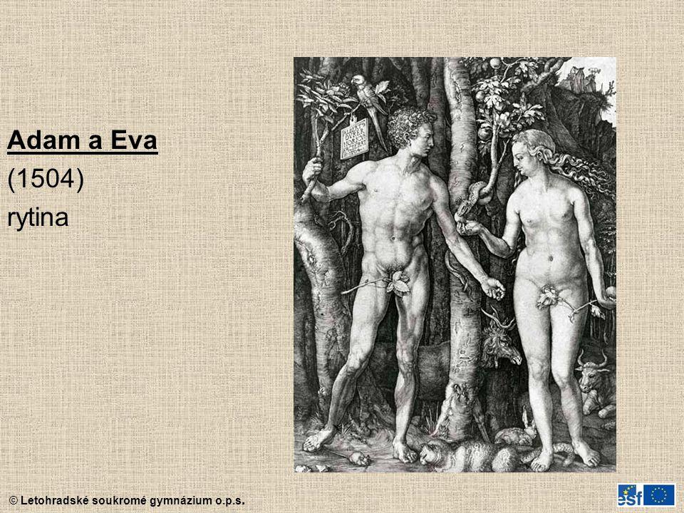 © Letohradské soukromé gymnázium o.p.s. Adam a Eva (1504) rytina