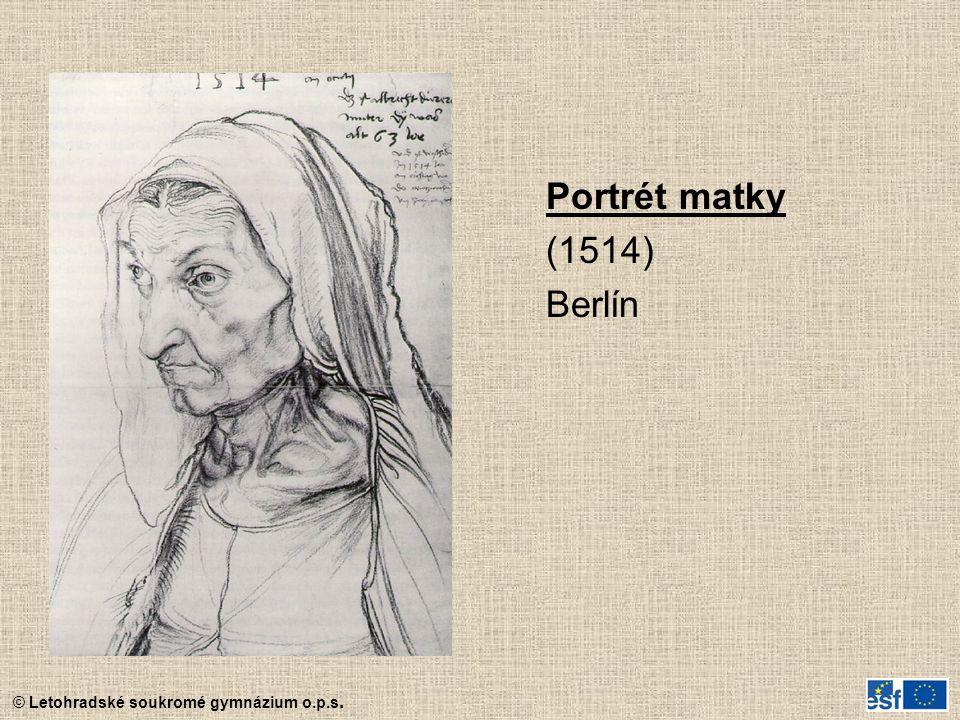 © Letohradské soukromé gymnázium o.p.s. Portrét matky (1514) Berlín