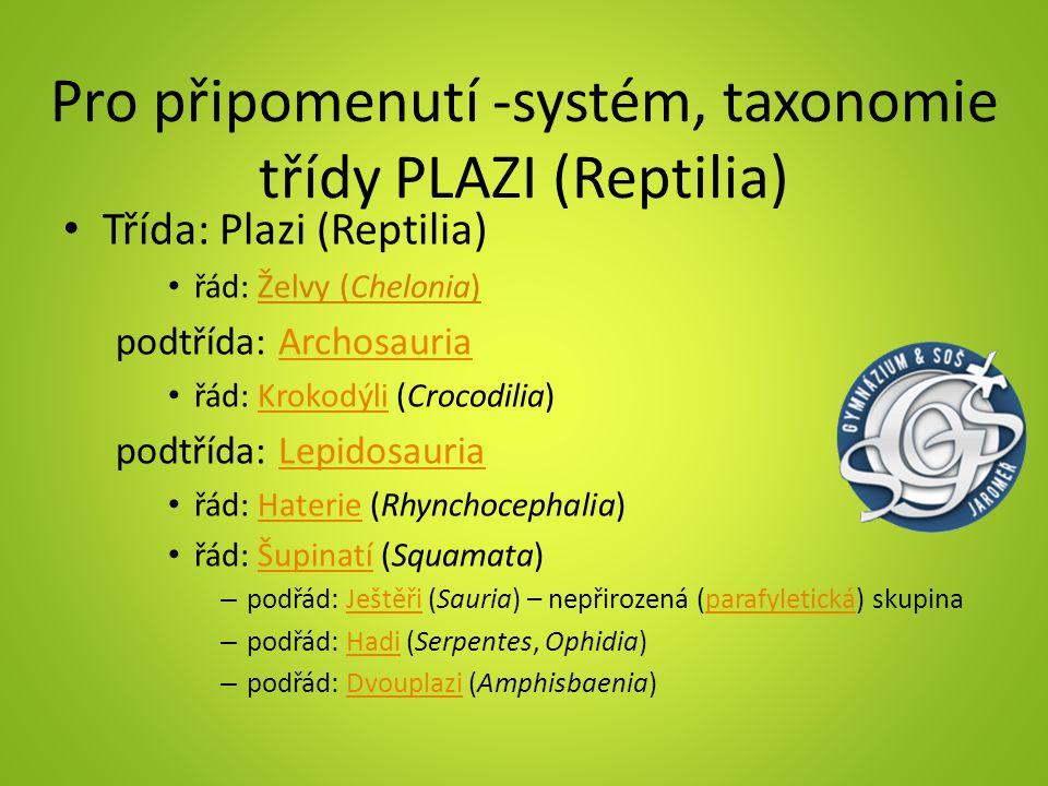 Pro připomenutí -systém, taxonomie třídy PLAZI (Reptilia) Třída: Plazi (Reptilia) řád: Želvy (Chelonia) podtřída: ArchosauriaArchosauria řád: Krokodýl