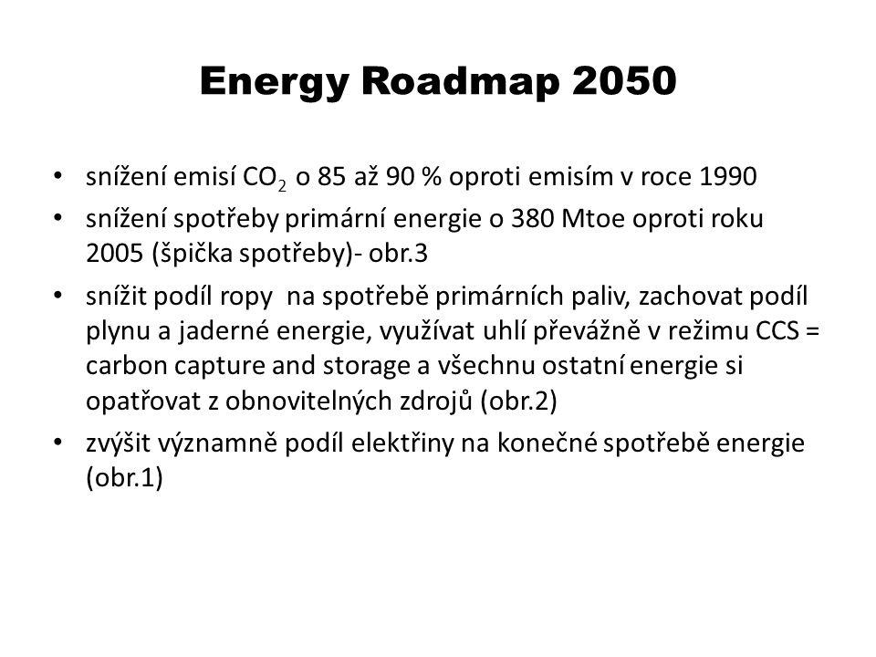 Důvody pro tuto politiku spatřuje EU následující klimatické změny vlivem nárůstu koncentrací CO 2 v ovzduší je nutné omezit (Čína, Indie a další ekonomicky významné asijské státy tuto politiku nesdílejí) cena ropy roste ve spirále zemní plyn bude ropu v nárůstu ceny následovat současný trh s elektřinou nefunguje