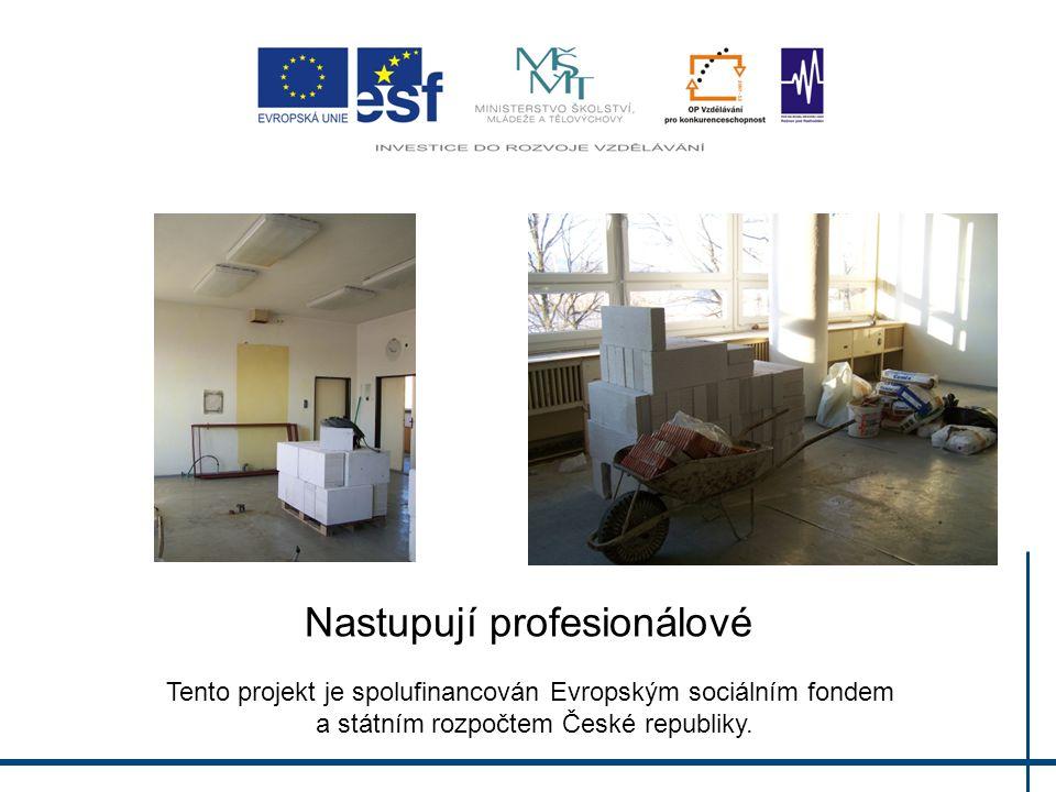 Nastupují profesionálové Tento projekt je spolufinancován Evropským sociálním fondem a státním rozpočtem České republiky.