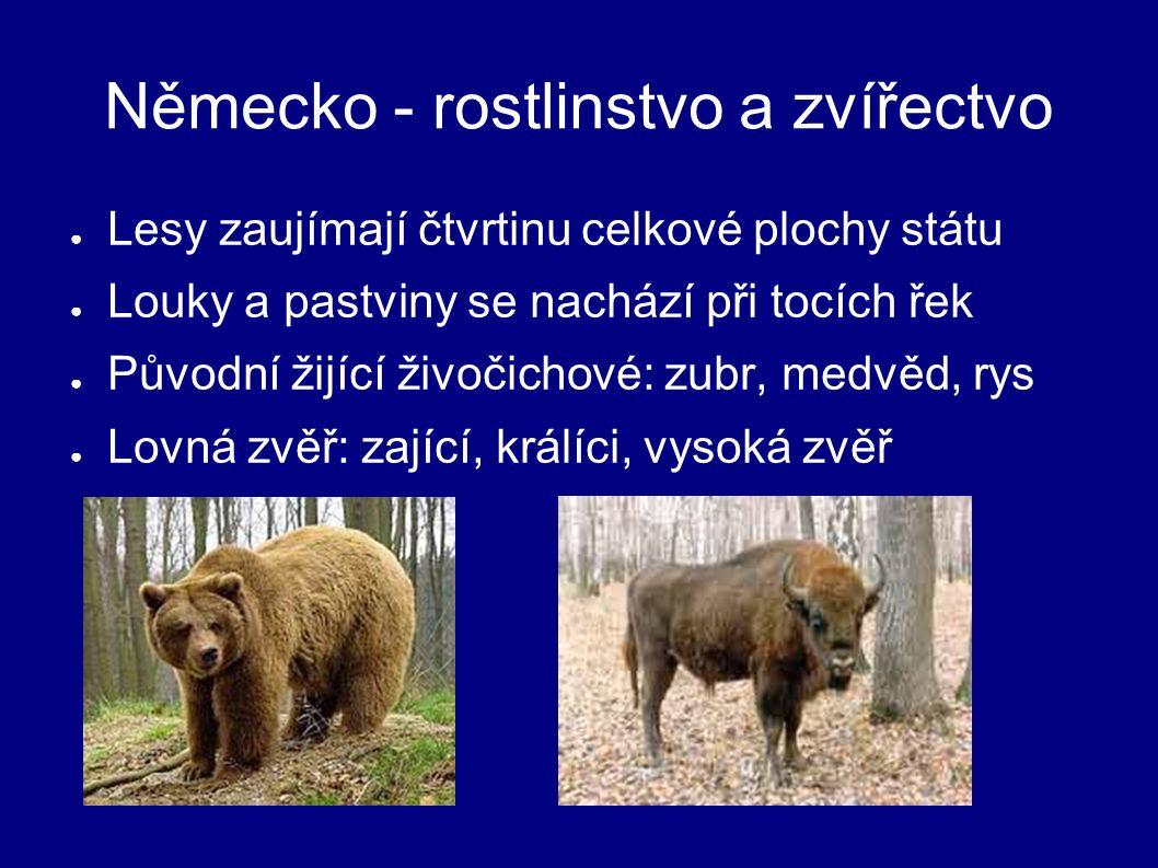 Německo - rostlinstvo a zvířectvo ● Lesy zaujímají čtvrtinu celkové plochy státu ● Louky a pastviny se nachází při tocích řek ● Původní žijící živočichové: zubr, medvěd, rys ● Lovná zvěř: zající, králíci, vysoká zvěř