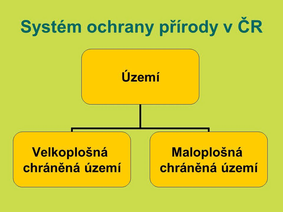 Systém ochrany přírody v ČR Území Velkoplošná chráněná území Maloplošná chráněná území
