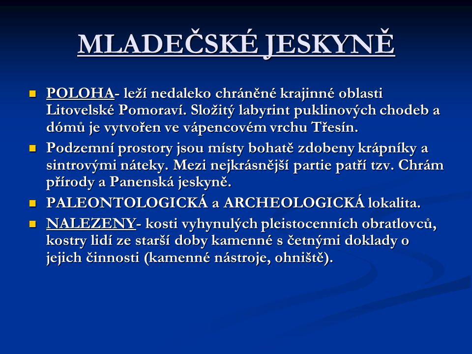 MLADEČSKÉ JESKYNĚ POLOHA- leží nedaleko chráněné krajinné oblasti Litovelské Pomoraví.