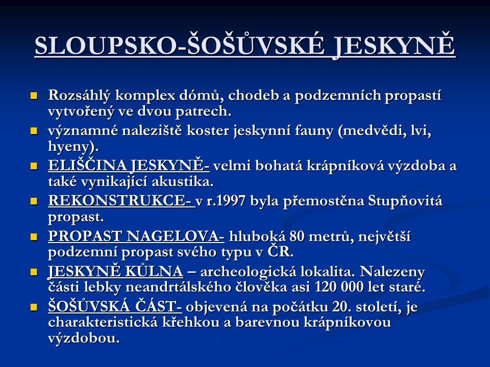 SLOUPSKO-ŠOŠŮVSKÉ JESKYNĚ Rozsáhlý komplex dómů, chodeb a podzemních propastí vytvořený ve dvou patrech.