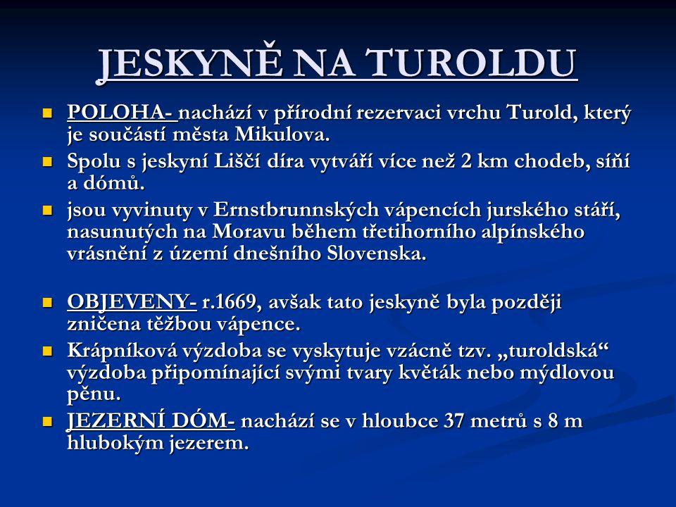JESKYNĚ NA TUROLDU POLOHA- nachází v přírodní rezervaci vrchu Turold, který je součástí města Mikulova.