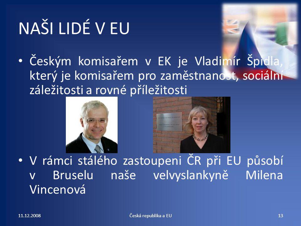 NAŠI LIDÉ V EU Českým komisařem v EK je Vladimír Špidla, který je komisařem pro zaměstnanost, sociální záležitosti a rovné příležitosti V rámci stáléh