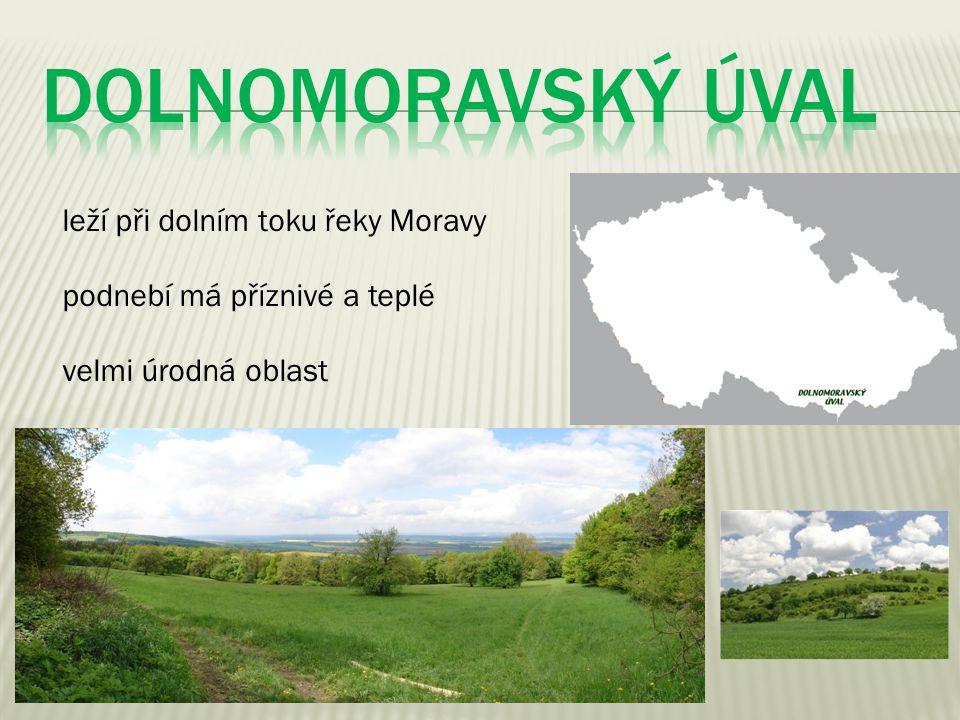 leží při dolním toku řeky Moravy podnebí má příznivé a teplé velmi úrodná oblast