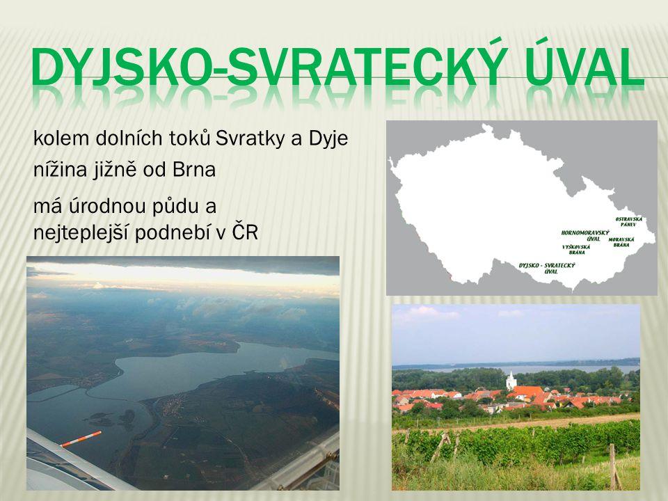 kolem dolních toků Svratky a Dyje nížina jižně od Brna má úrodnou půdu a nejteplejší podnebí v ČR