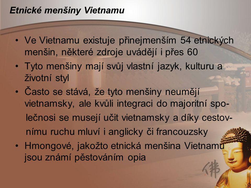 Etnické menšiny Vietnamu Ve Vietnamu existuje přinejmenším 54 etnických menšin, některé zdroje uvádějí i přes 60 Tyto menšiny mají svůj vlastní jazyk,