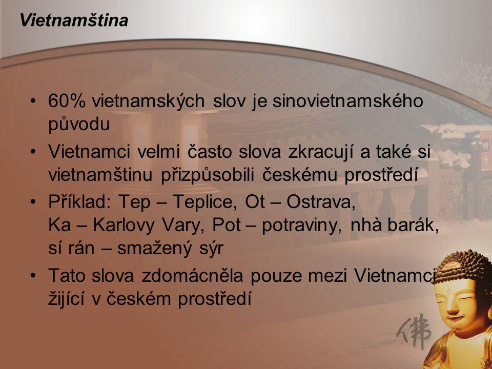 Vietnamština 60% vietnamských slov je sinovietnamského původu Vietnamci velmi často slova zkracují a také si vietnamštinu přizpůsobili českému prostře
