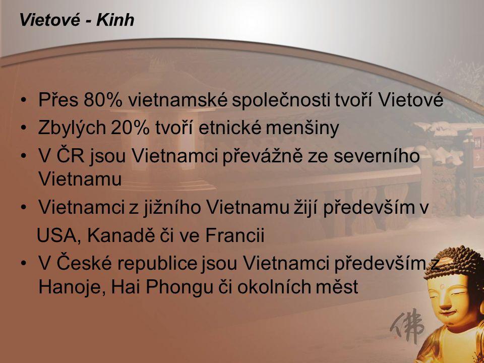 Vietové - Kinh Přes 80% vietnamské společnosti tvoří Vietové Zbylých 20% tvoří etnické menšiny V ČR jsou Vietnamci převážně ze severního Vietnamu Viet