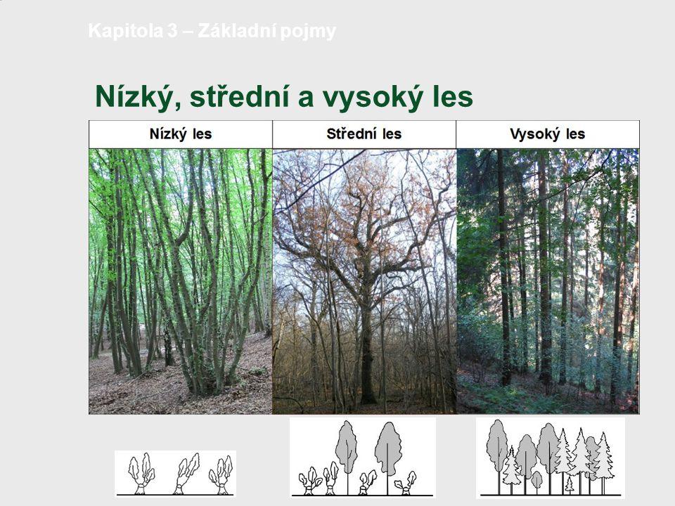 Potenciální rozšíření nízkého a středního lesa v ČR strana 7 /18 Pozn.: červeně orámováno - typická stanoviště pro nízký a střední les (cca 46 %) Kapitola 3 – Základní pojmy