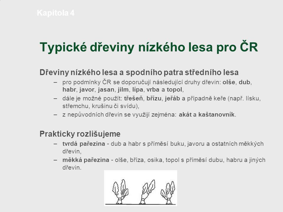 Typické dřeviny nízkého lesa pro ČR Dřeviny nízkého lesa a spodního patra středního lesa – pro podmínky ČR se doporučují následující druhy dřevin: olš