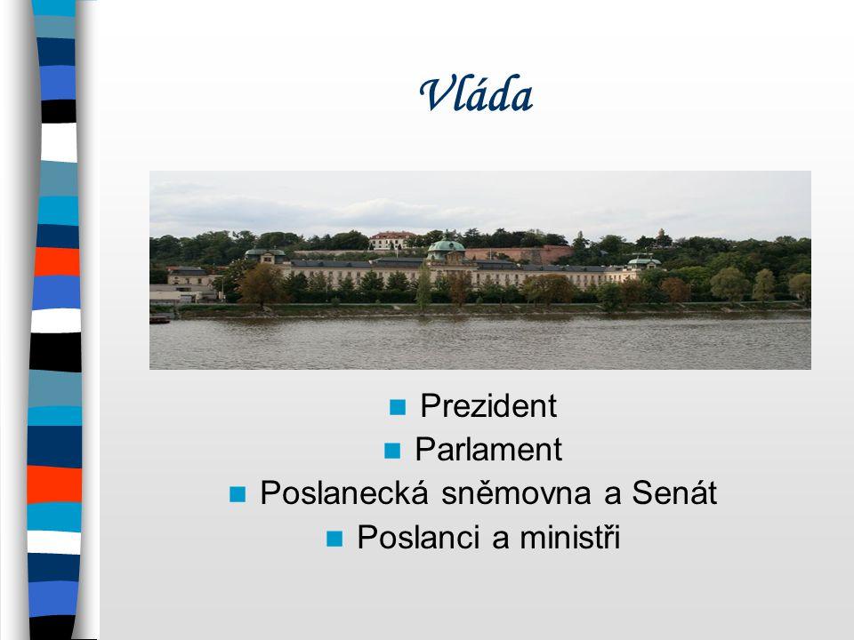 Vláda Prezident Parlament Poslanecká sněmovna a Senát Poslanci a ministři