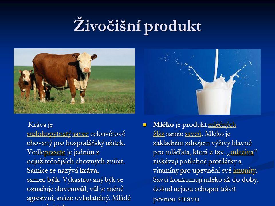 Živočišní produkt Kráva je sudokopytnatý savec celosvětově chovaný pro hospodářský užitek. Vedleprasete je jedním z nejužitečnějších chovných zvířat.